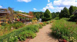 Miller Nature Preserve Avon Ohio Realtor